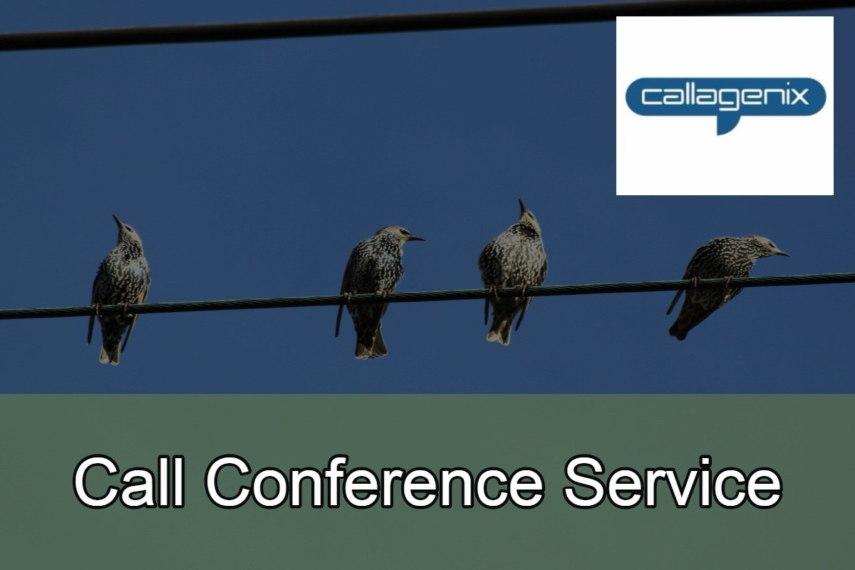 Call Conference Service